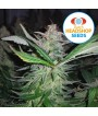 White Widow (Huismerk)