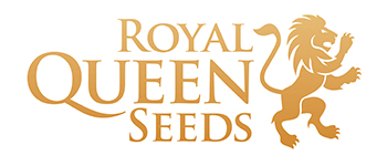 Wietzaden van Royal Queen seeds