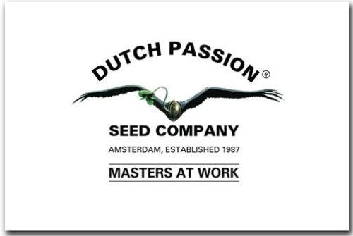 Dutch Passion Zaden logo Dutch Headshop