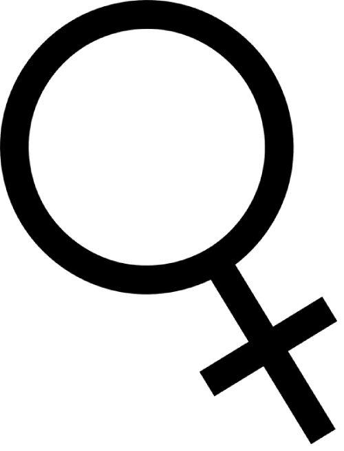 Gefeminiseerd Logo Dutch Headshop