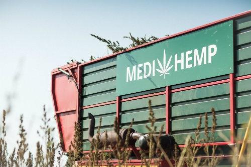 Medihemp CBD Producent Dutch Headshop